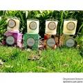 classicmaisoncandle,lindenanddarkmoss,sakelemonflower,yuzurosestonecrop,amaranthandjasmine,324