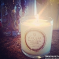 classicmaisoncandle,sakelemonflower